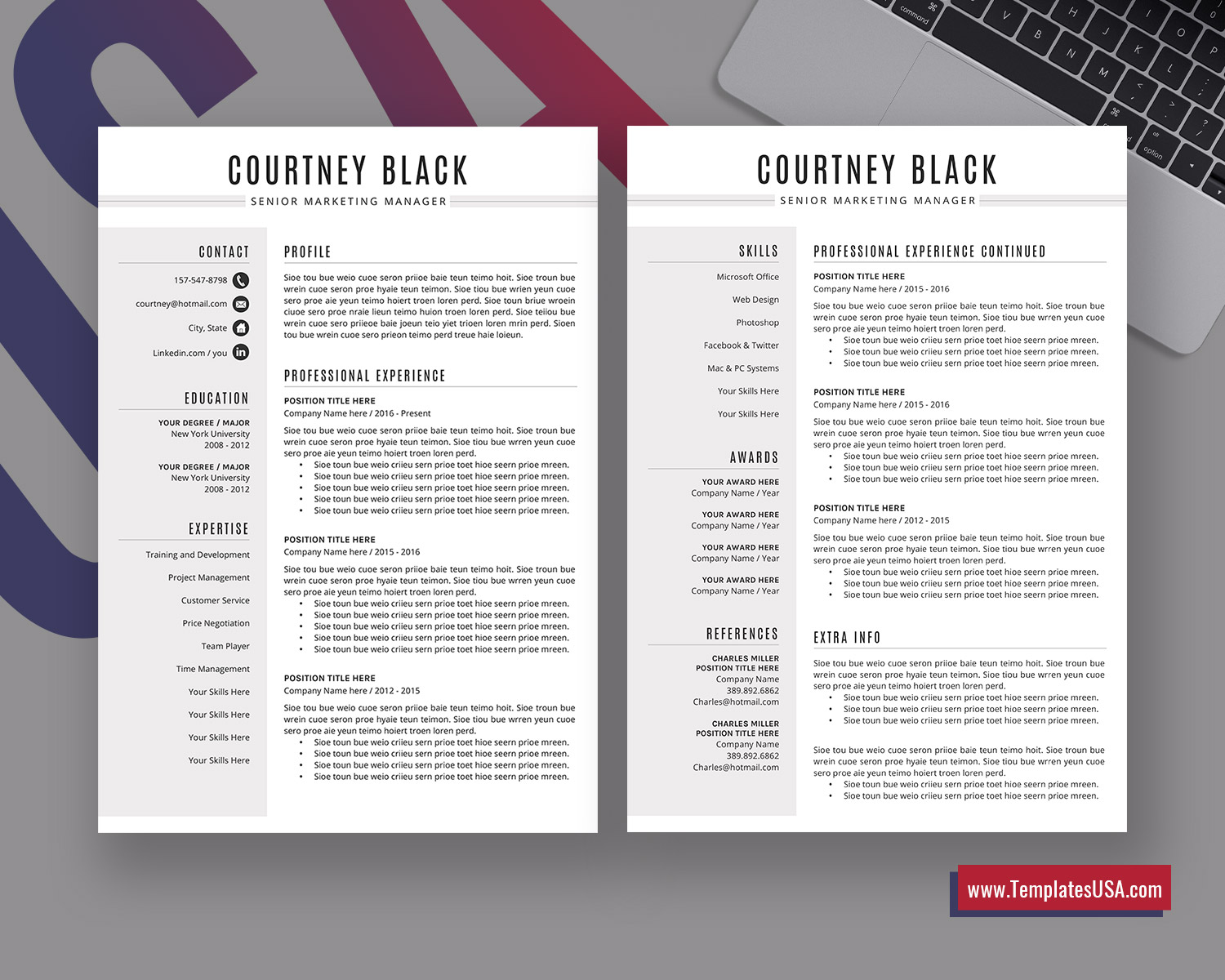 Professional Resume Template Simple Resume Format Curriculum