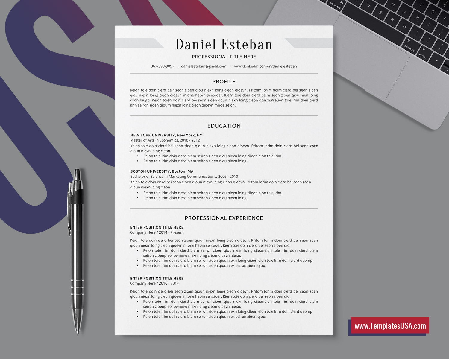 Simple Resume Format For Word Professional Cv Template Clean