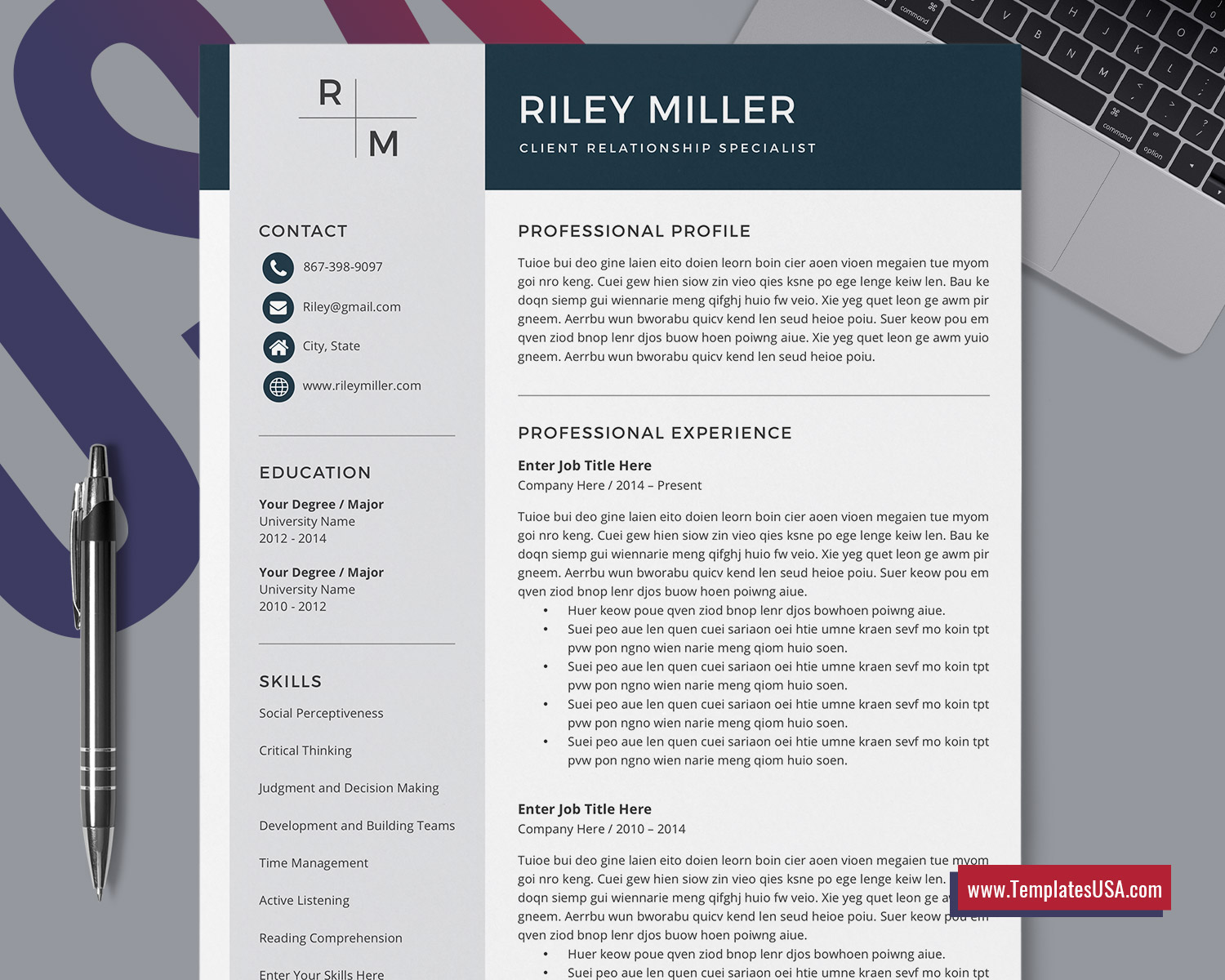 Professional Resume Template For Ms Word Curriculum Vitae Modern